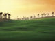 The recently opened Allegria Golf Club, near Cairo