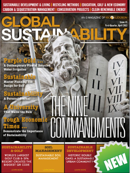 Global Sustainability front cover