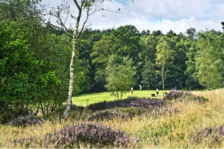 Mannings Heath Kingfisher Course hole 1