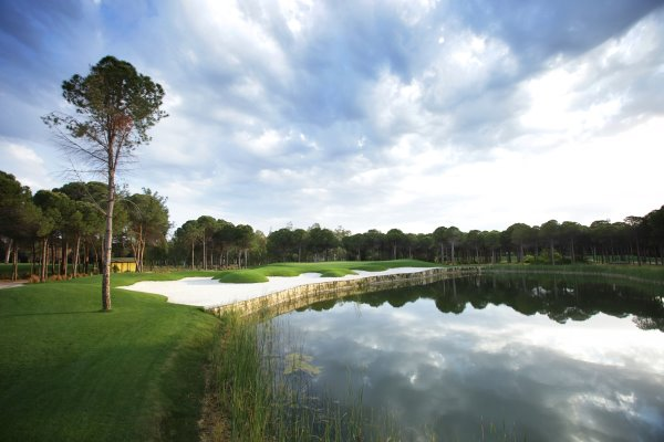 The Montgomerie Maxx Royal - 14th hole