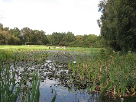 2012 Overall Winner – Thorpeness Golf Club