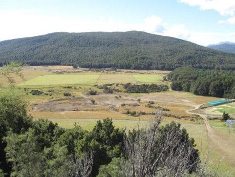 Intturf co NZ site1