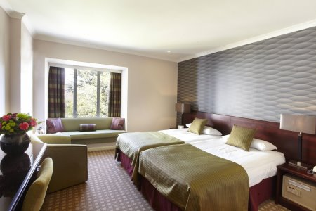 Superior Twin Room in The Manor House