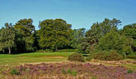 Burhill Golf Club, Old Course