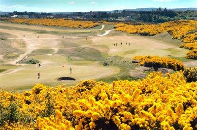 Royal Dornoch Golf Club aerial