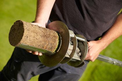 Thatch in soil core