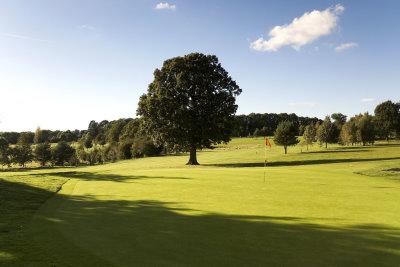 The 17th hole at Tudor Park Golf Course