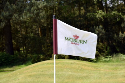Woburn Pin and Flags 2015 (6)