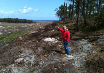 Principal Architect Cynthia Dye Inspecting the Clearing of Hole 4