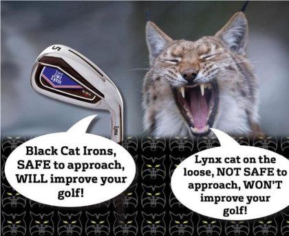Loose Lynx
