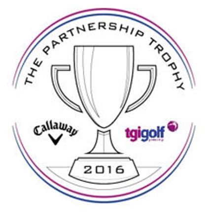 TGI Partnership Trophy image